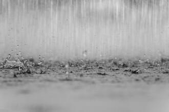 Prognoză specială pentru București. Vreme ploioasă cu caracter torențial până duminică