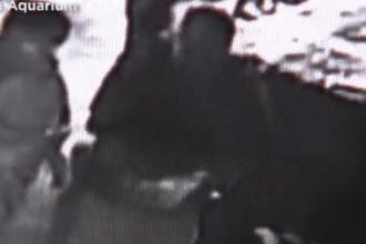 3 bărbați au încercat să fure un rechin cu un cărucior de copii. Poliția a crezut că e o farsă