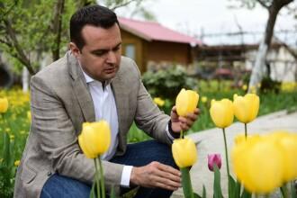 ANI: Primarul din Baia Mare are o avere nejustificată de 2,7 milioane de lei