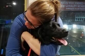 O familie britanică şi-a găsit câinele pierdut în urmă cu 6 ani. Cum a fost posibil