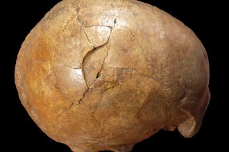 Misterul unei crime de acum 30.000 de ani ani a fost elucidat de experți