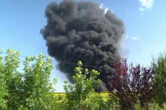 Incendiul de lângă Oradea, stins cu greu. De ce au venit experţi în evaluare nucleară