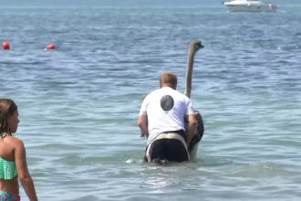 Cum a intrat un bărbat în mare şi de ce s-au adunat toţi turiştii în jurul lui