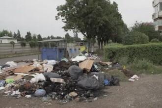 Orașul în care doar două treimi plătesc salubritatea începe să fie sufocat de gunoaie