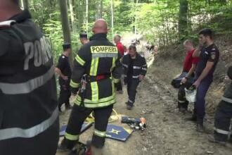 Un om de afaceri proaspăt căsătorit a murit strivit de un tractor, în pădure