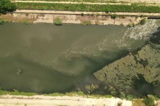 Dâmboviţa, transformată într-un râu de dejecţii. De ce nu merge staţia de epurare Glina