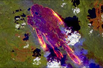 Situație dezastruoasă în Rusia. 230 de incendii, sub forma unei păsări de foc