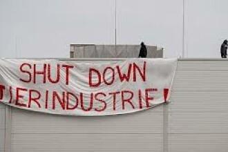 Protest la abatorul din Germania unde aproape 1.000 de muncitori români au Covid-19
