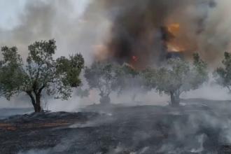 Atenţionare de călătorie transmisă de MAE: Pericol de incendii în Grecia