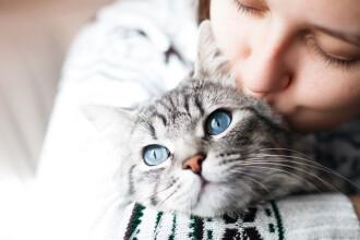 """Femeia care și-a găsit pisica după 12 ani. """"Am fost complet șocată"""""""