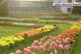 Grădinile botanice, oaze de liniște în mijlocul orașelor. Tot mai mulți români le vizitează