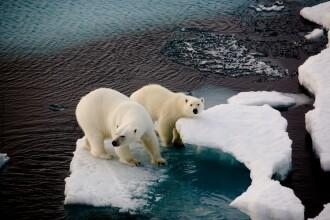 Previziuni alarmante ale meteorologilor, despre creșterea temperaturilor la nivel global