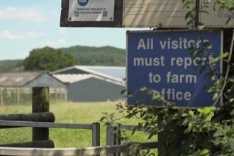 Stare de urgenţă la o fermă agricolă din nordul Angliei unde lucrează şi sute de muncitori români