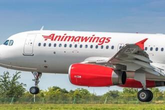 Cea mai nouă companie aeriană din România a inaugurat primele sale curse. Către ce destinații va zbura