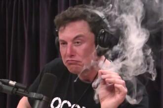 """Elon Musk se teme că inteligența artificială ar putea prelua """"controlul lumii"""""""