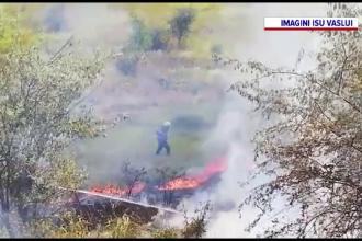 Incendiu de vegetație uriaș în Vaslui. Șase hectare au ars