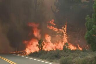 Incendii de vegetație grave în California. Suprafața arsă e dublă față de anul trecut