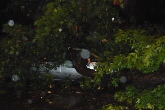 Urme dupa furtuna din Capitala: inundatii, pomi cazuti, acoperisuri smulse