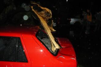 Furtuna violenta in Capitala! Copaci cazuti si strazi inundate!