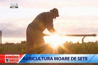 Romania, te iubesc: Agricultura moare de sete!