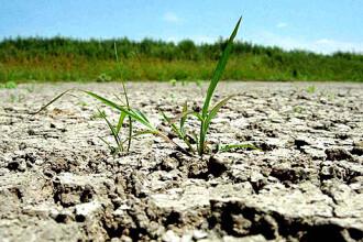 Moldova, puternic afectata de seceta!