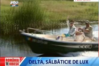 Romania, te iubesc: In Delta e criza doar... la peste!