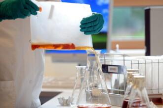 Bacteria E.coli ar putea fi controlata ca un robot. Cercetatorii cred ca va schimba total medicina