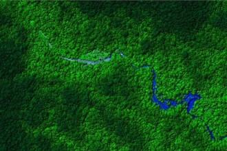 Un mister de 400 de ani, la un pas de rezolvare. Jungla din Honduras isi dezvaluie secretele