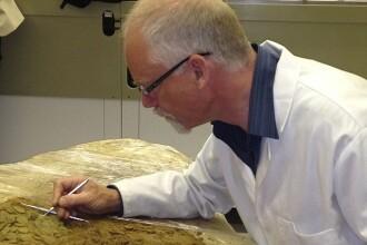 Dupa 30 de ani de cautari, au descoperit o comoara care valoreaza 12 milioane de euro