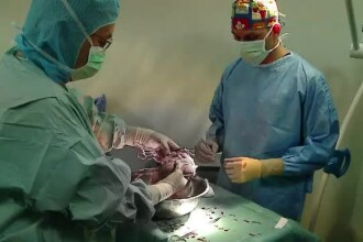 Organele copilului aflat in moarte cerebrala, dupa ce o poarta a cazut peste el, au fost donate