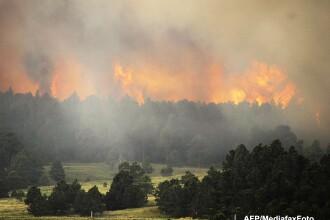 Mii de oameni au fost evacuati in statul american Colorado, din cauza incendiilor de vegetatie. FOTO