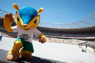 Campionatul Mondial de Fotbal 2014: Fuleco, mascota competitiei din Brazilia, o poveste controversata