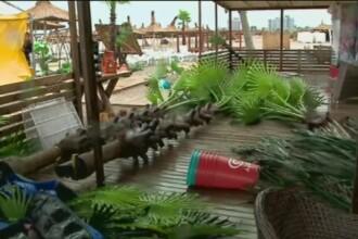 La malul marii se face curatenie dupa dezastrul lasat in urma de ciclonul mediteranean. De luni, vremea se anunta frumoasa