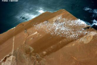 O fotografie facuta de un astronaut pare sa demonstreze ca Pamantul e plat.