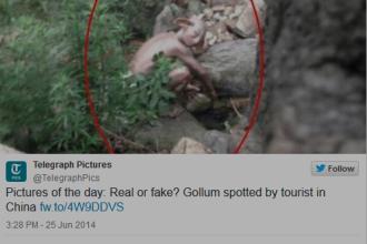 Misterul a fost elucidat. Ce este, de fapt, creatura bizara care seamana cu Gollum, pozata in China