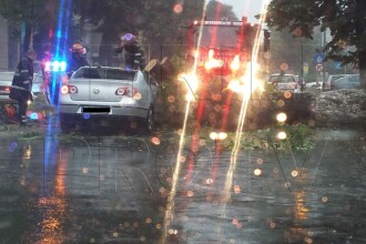 Imaginile tragediei pe care o furtuna a produs-o in Vest. Seful DSVSA Arad a murit dupa ce un copac a cazut peste masina sa