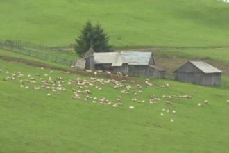 Ciobanii din Muntii Sebesului s-au modernizat. Si-au dotat stanele cu panouri solare, curent si apa in casa