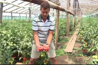 Satul din Galati unde strainii stau la coada sa cumpere legume. Zeci de tiruri pleaca zilnic spre alte tari din Europa