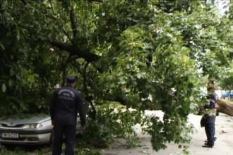 Ce s-a intamplat pe o strada din Timisoara dupa ce a trecut TIR-ul. A fost nevoie de interventia pompierilor