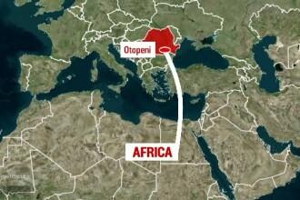 Un drog din Africa, de mare risc, e importat in cantitati masive si in Romania. Captura impresionanta facuta de politisti