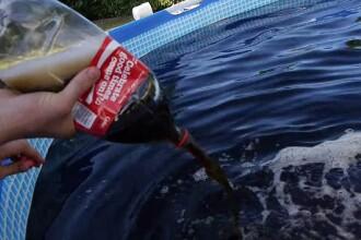 A umplut o piscina cu 6 tone de Coca-Cola, apoi a aruncat galeti cu Mentos inauntru. Ce a urmat VIDEO