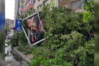 Ploile torentiale au afectat mai multe judete din tara, lasand pagube insemnate in urma lor.