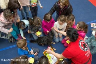 Terapia prin joaca, modalitatea prin care cainii sunt folositi pentru a ajuta copiii sa interactioneze cu celelalte persoane