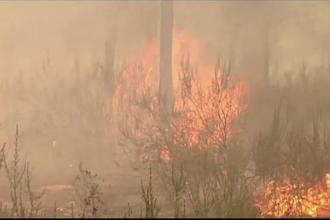 Incendiile de vegetatie, in sudul Spaniei. Peste 1.500 de persoane au primit ordin de evacuare