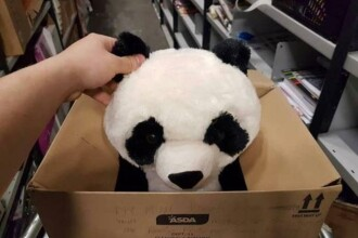 A dorit un urs panda de plus, insa mama sa nu si l-a putut permite. Mesajul scris de baiat i-a impresionat pe angajati