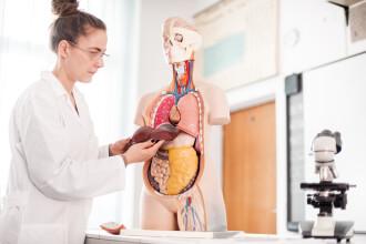 Factorii care pot afecta grav ficatul. Cum poate fi evitat un transplant