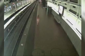 O căprioară a ajuns din greșeală într-o stație de metrou. Reacția pasagerilor