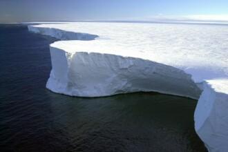 Descoperire uimitoare în Antarctica. Este veche de 200 de milioane de ani