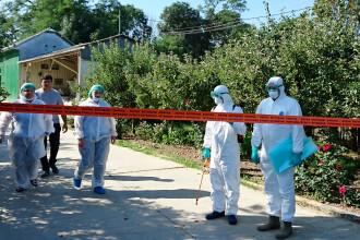 Alertă în cinci sate din Tulcea, unde au fost confirmate cazuri de pestă porcină