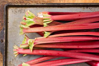 Ce trebuie să știi despre rubarbă înainte de a o folosi în bucătărie